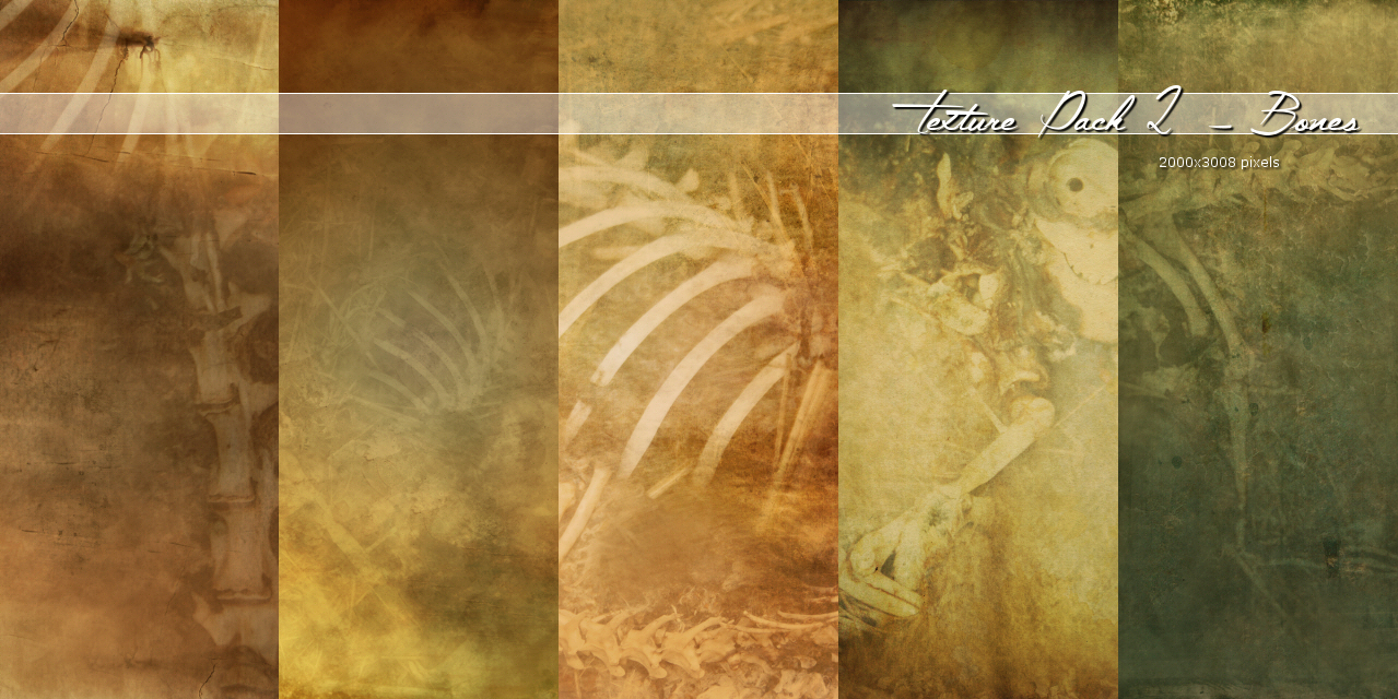 Texture002 – Bones