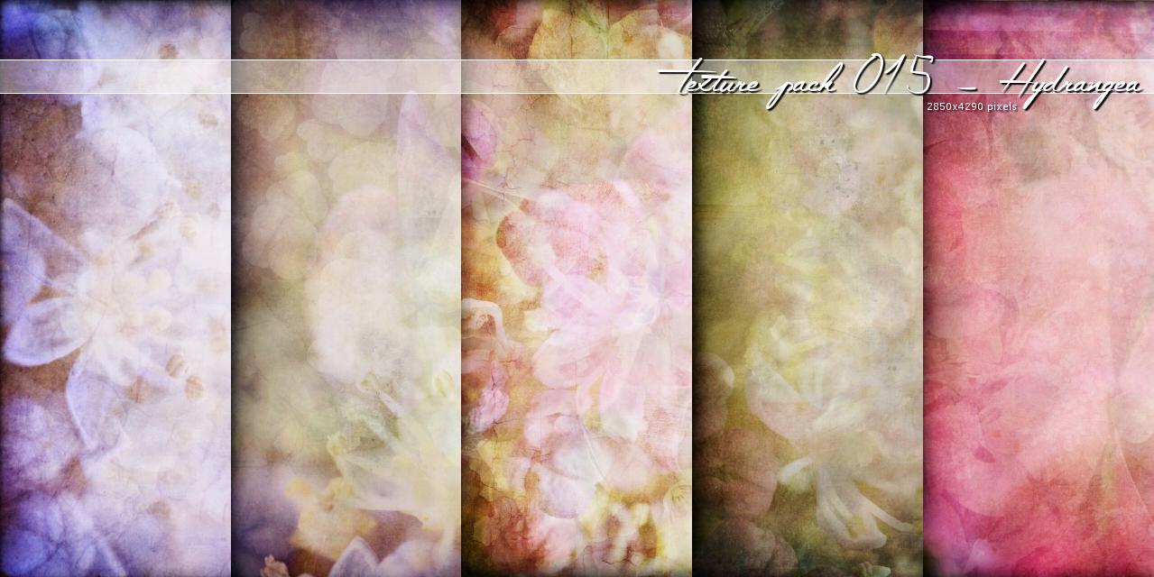 Texture015 – Hydrangea