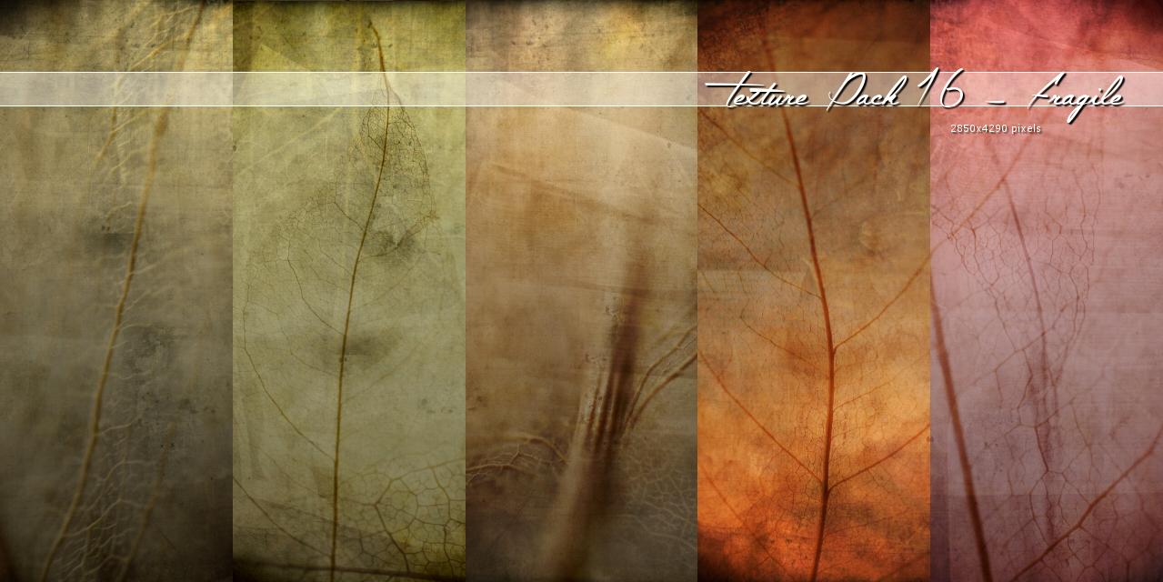 Texture016 – Fragile