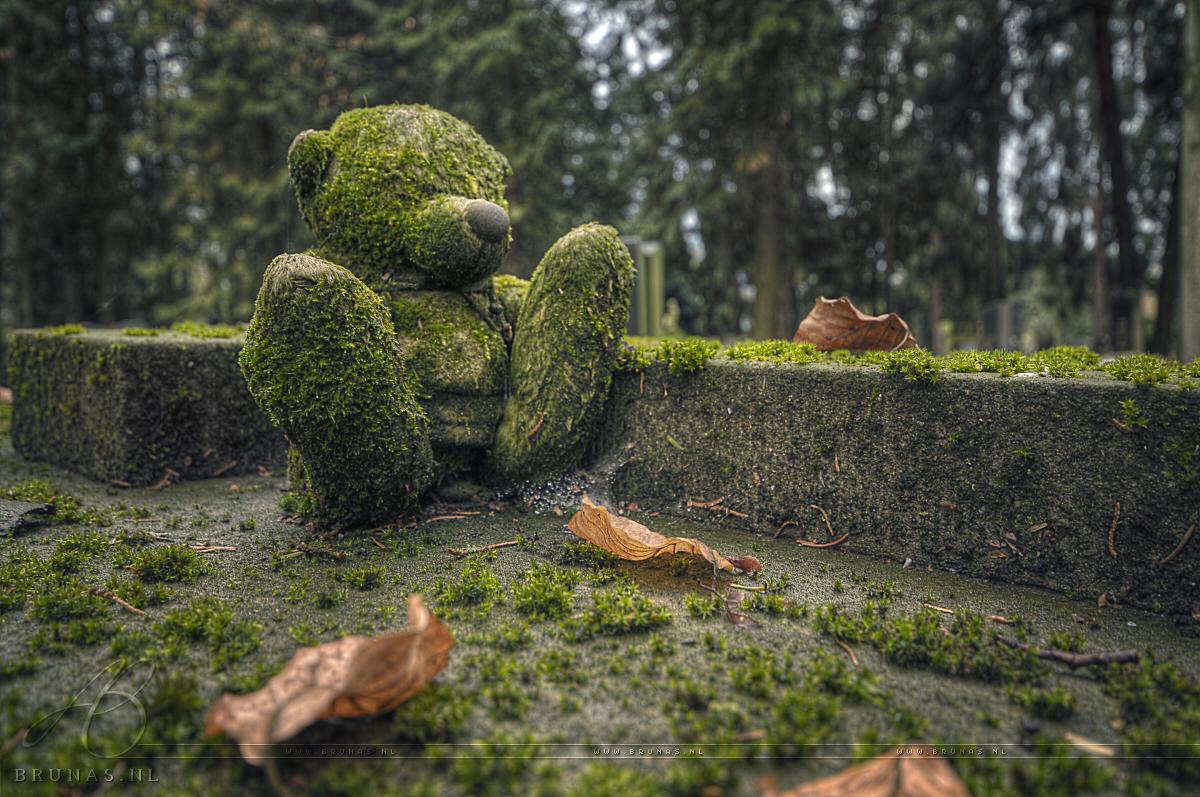 Cemetery's