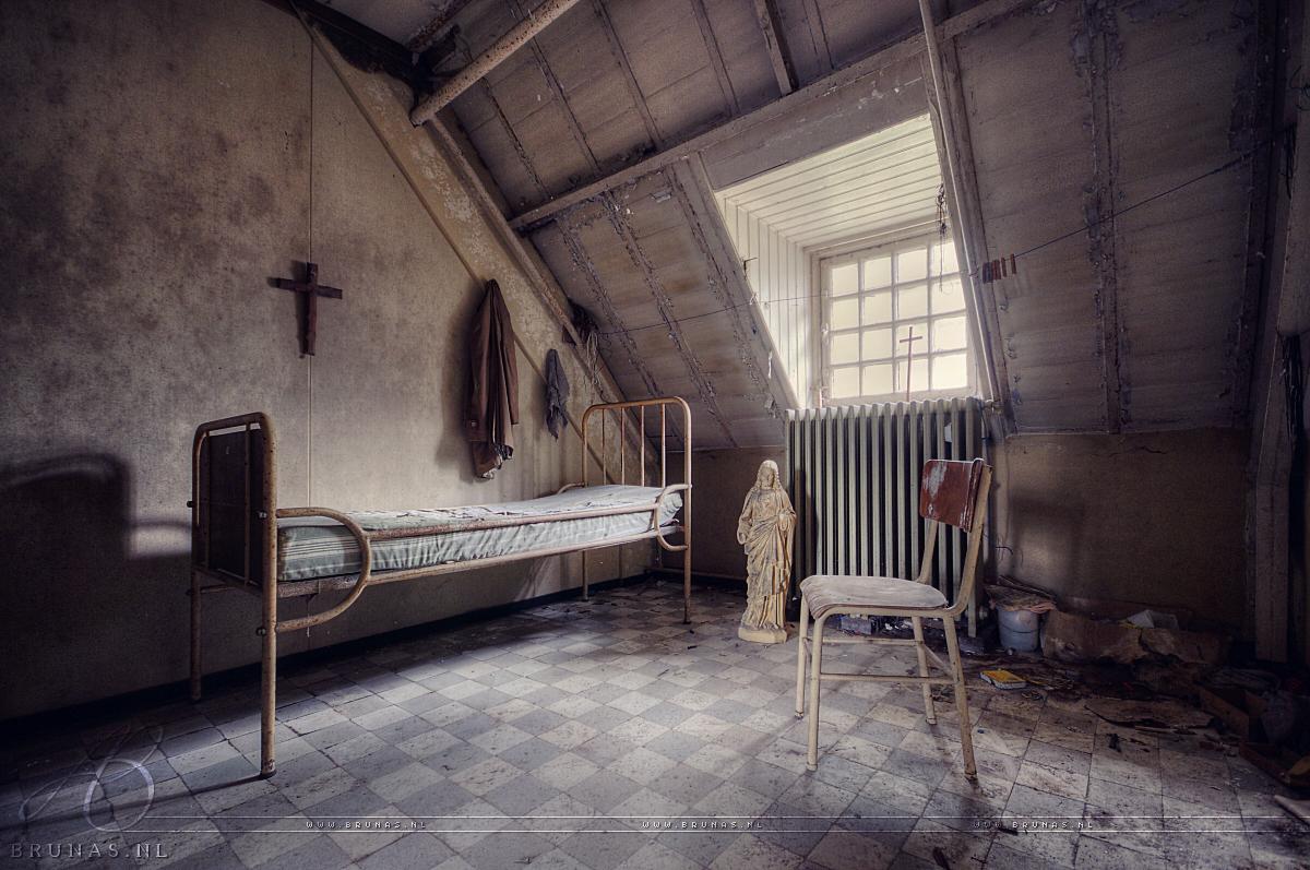 Psy asylum